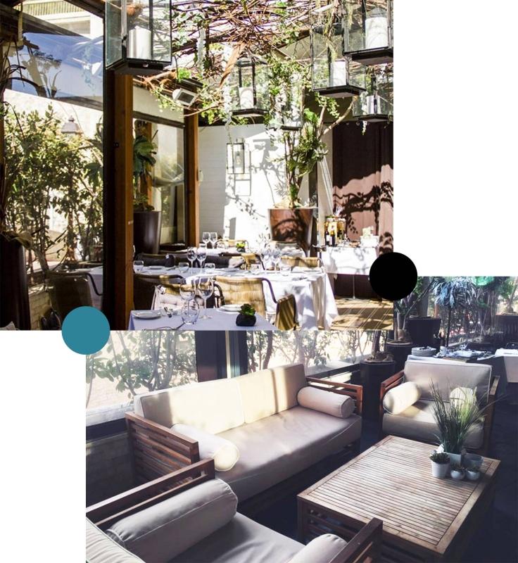 Avenue 31 - Restaurant Monaco